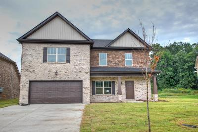 Eagleville Single Family Home For Sale: 617 Eagle View Dr - #15