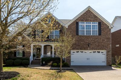 Hendersonville Single Family Home Under Contract - Showing: 117 Herons Nest Ln