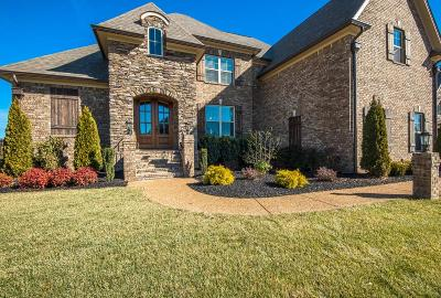 Spring Hill Single Family Home For Sale: 8002 Puddleduck Ln