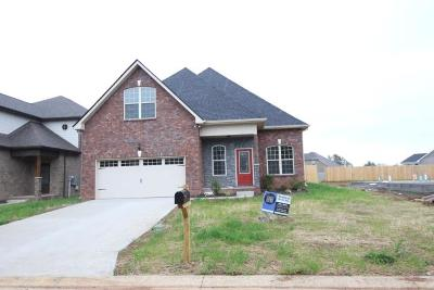 Single Family Home For Sale: 2812 Lightning Bug Dr