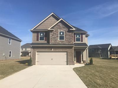 Clarksville Single Family Home For Sale: 487 Reserve At Oakland