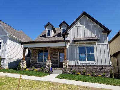 Nolensville Single Family Home For Sale: 4244 Dysant Alley