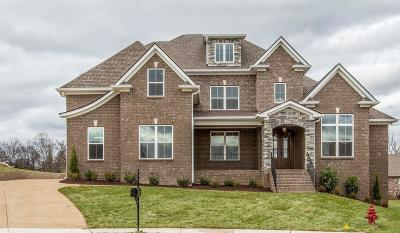 Spring Hill Single Family Home Active - Showing: 6008 Wallaby Court (394)