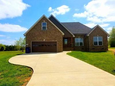 Single Family Home Under Contract - Not Showing: 202 Raleigh Pl