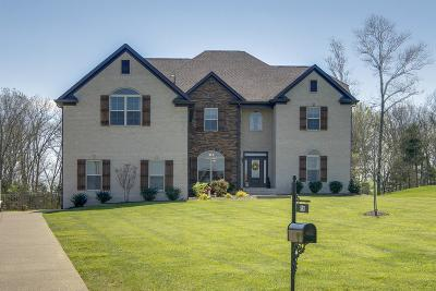 Mount Juliet Single Family Home For Sale: 593 Butternut Trl
