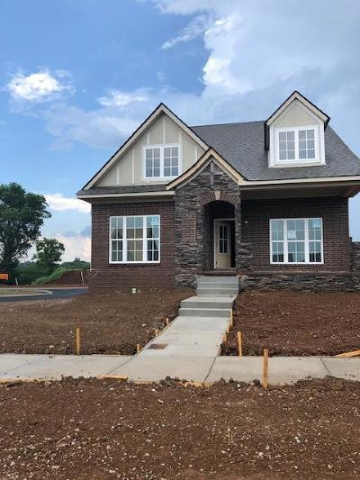Spring Hill Single Family Home Under Contract - Not Showing: 111 Harvest Point Blvd Lot 75
