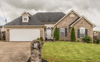 Lavergne Single Family Home For Sale: 5016 Hectare Ln