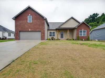 Robertson County Single Family Home For Sale: 167 Fieldstone Ln