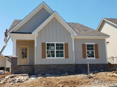 Nolensville Single Family Home For Sale: 4070 Liberton Way