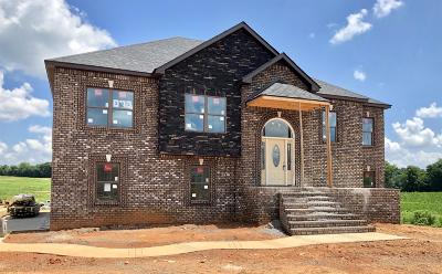 Clarksville Single Family Home For Sale: 583 Farmington
