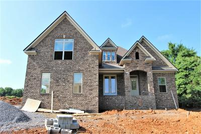 Mount Juliet Single Family Home For Sale: 9 Couchville Pike #9
