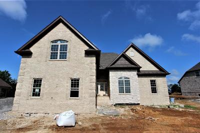 Mount Juliet Single Family Home For Sale: 2 Couchville Pike #2-C