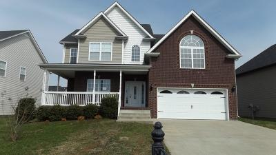 Clarksville Single Family Home For Sale: 3389 Franklin Meadows Way