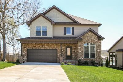 Smyrna Single Family Home For Sale: 5513 Stonefield Dr