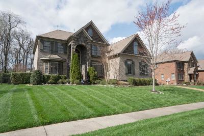 Franklin Single Family Home For Sale: 9092 Chardonnay Trce