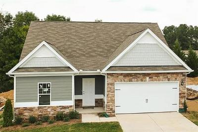 Spring Hill  Single Family Home For Sale: 901 Carnation Drive