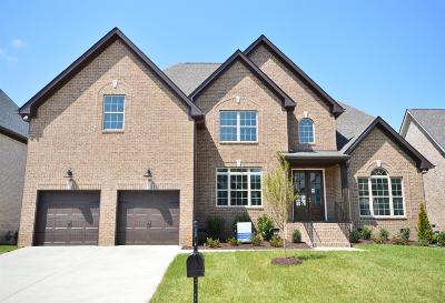 Spring Hill Single Family Home For Sale: 4013 Haversack Dr (310)