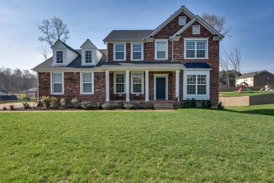 Fairview Single Family Home For Sale: 7201 Affirmed Ct