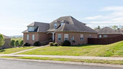 Hendersonville Single Family Home Under Contract - Showing: 104 Holmes Dr
