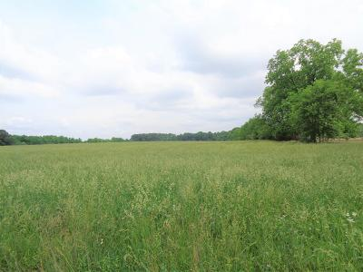 Lawrenceburg Residential Lots & Land For Sale: 700 Beuerlein St