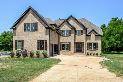 Spring Hill Single Family Home Active - Showing: 1009 Gadwall Lane (Lot 304)