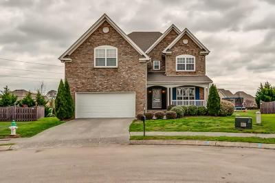 Spring Hill Single Family Home For Sale: 2012 Katach Ct