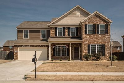 Hendersonville Single Family Home For Sale: 1044 Merrick Rd