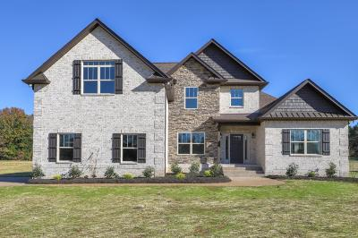 Mount Juliet Single Family Home For Sale: 7275 Couchville Pike