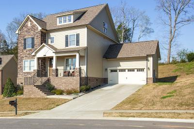 Nolensville Single Family Home For Sale: 5066 Aunt Nannies Pl