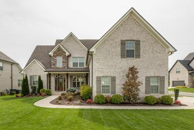 Spring Hill Single Family Home For Sale: 4139 Miles Johnson Pkwy