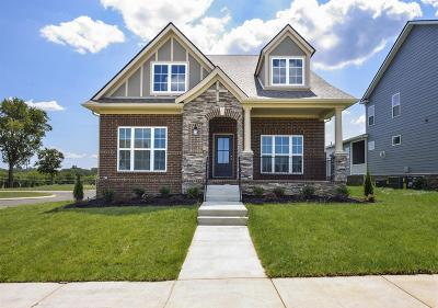 Spring Hill Single Family Home Active - Showing: 121 Harvest Point Blvd