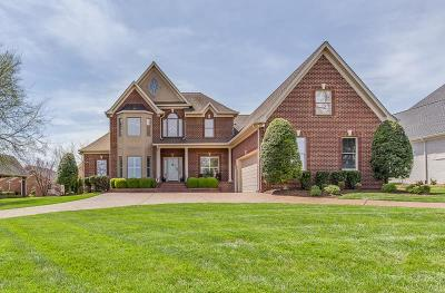 Sumner County Single Family Home For Sale: 471 Bay Point Dr