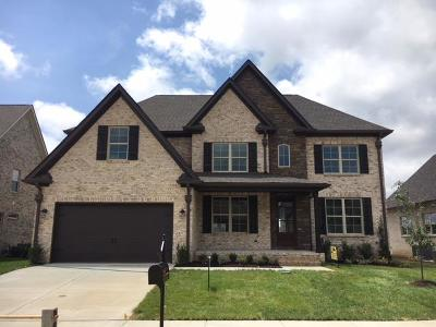 Spring Hill Single Family Home For Sale: 3008 Grunion Ln (359)