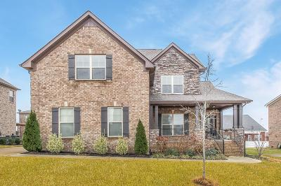 Spring Hill Single Family Home For Sale: 6005 San Giovanni Ct