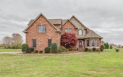 Clarksville Single Family Home For Sale: 4194 Shady Grove Rd
