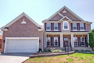 Mount Juliet Single Family Home For Sale: 125 Normandy Dr