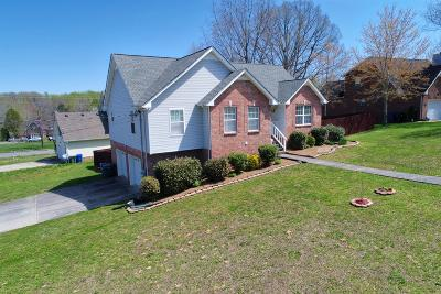 Robertson County Single Family Home For Sale: 203 S Aztec Dr