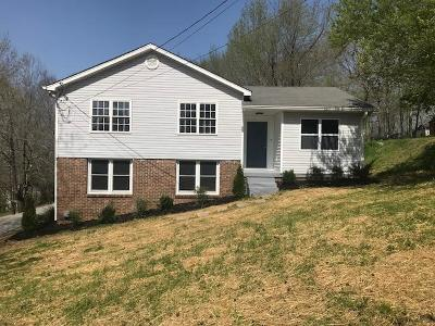 Cheatham County Single Family Home For Sale: 201 Annette Dr