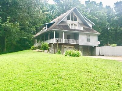 Dover Single Family Home For Sale: 131 Jaybird Dr