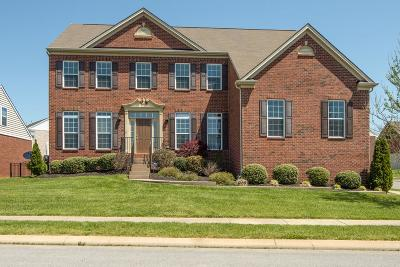 Nolensville Single Family Home For Sale: 2301 Trivaca Ct