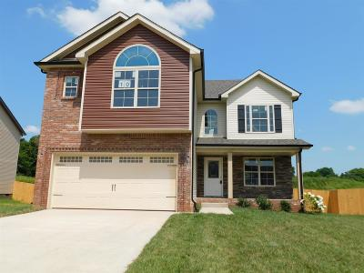 Clarksville Single Family Home Under Contract - Showing: 10 Hazelwood Court