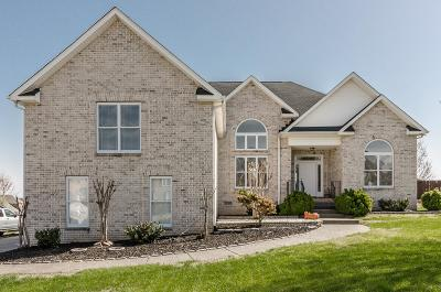 Hendersonville Single Family Home Under Contract - Showing: 191 Wynbrooke Trace