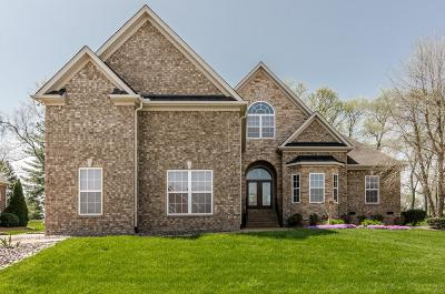 Sumner County Single Family Home For Sale: 743 Turnbo Dr