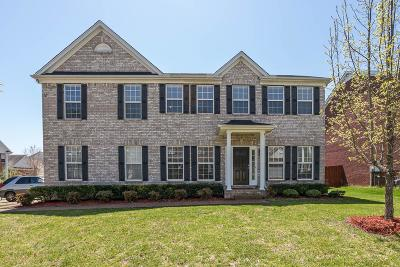 Spring Hill Single Family Home For Sale: 1893 Baileys Trace Dr