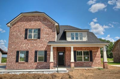 Rutherford County Single Family Home For Sale: 609 Eagle View Dr.- #17