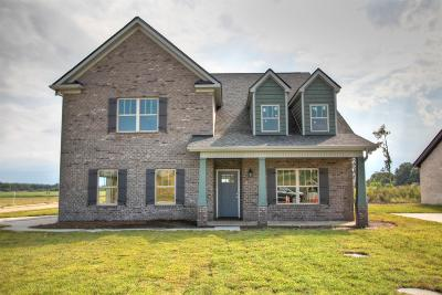 Rutherford County Single Family Home For Sale: 601 Eagle View Dr.- #19