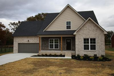 Smithville Single Family Home For Sale: 299 Stonegate Dr Lot 14