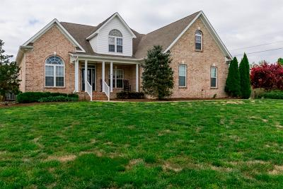 Maury County Single Family Home For Sale: 6901 Zion Crossing Ct