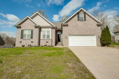 Dickson Single Family Home For Sale: 147 Iron Gate Ln