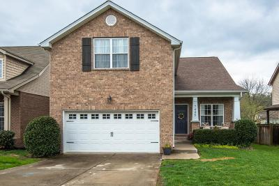 Davidson County Single Family Home For Sale: 7445 Riverland Dr